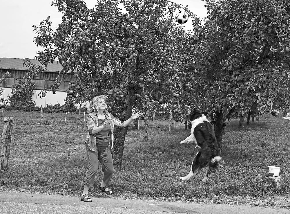Privat Ball spielend mit ihrem Hund